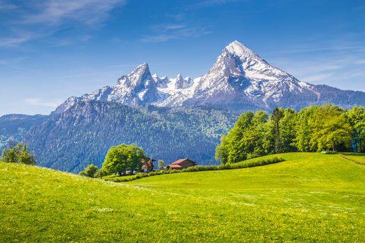 поле, горы, холмы, деревья, домик, пейзаж