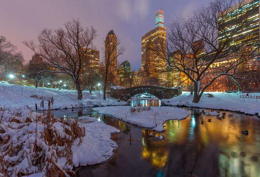Central park, New York, night, Gapstow Bridge