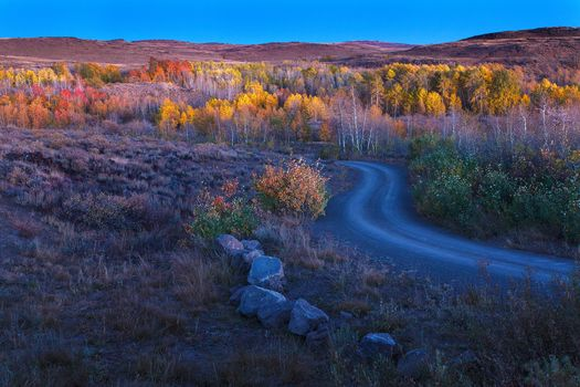 autumn, hills, trees, stones, landscape