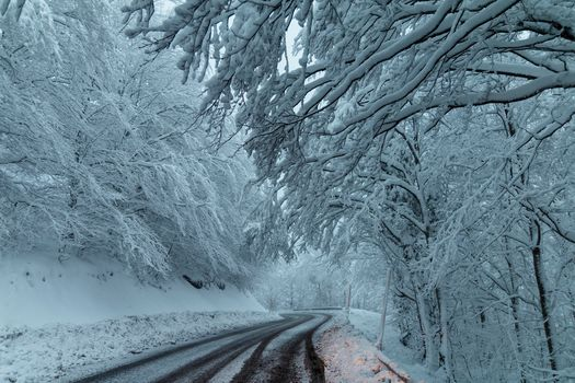 winter, snow, road, trees, forest, landscape