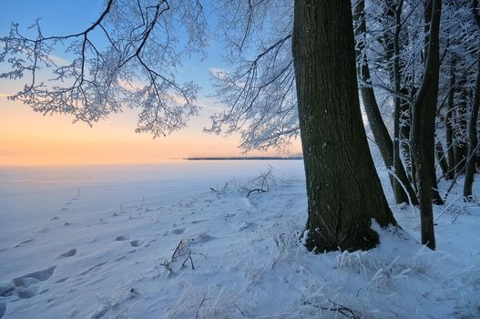 sunset, winter, snow, trees, snowdrifts, landscape