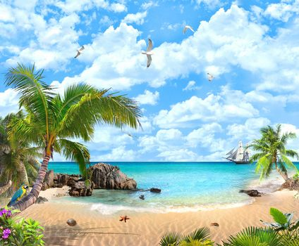 sea, ship, sailing ship, beach, sand, palm trees, a parrot, seagull, paradise, landscape