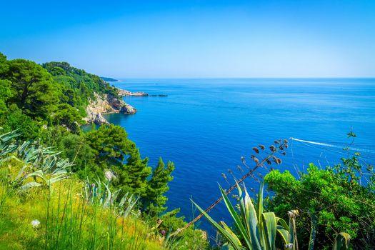 Croatia, sea, Coast, trees, landscape