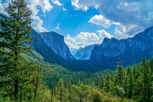 Yosemite National Park, Yosemite National Park, California, USA, forest, the mountains, trees, landscape