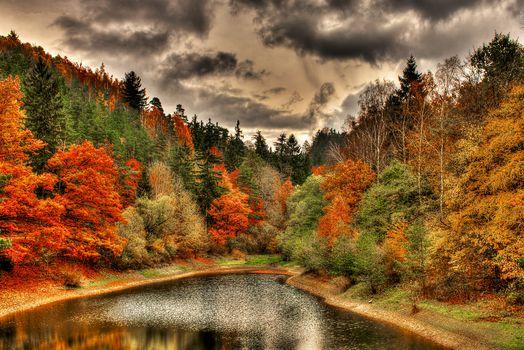 autumn, lake, clouds, forest, trees, landscape
