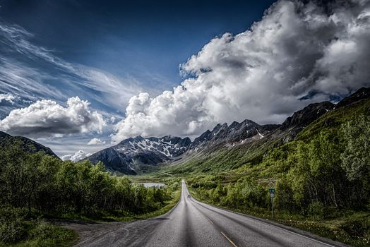 Call, Lofoten, Norway, the mountains, road, trees, landscape