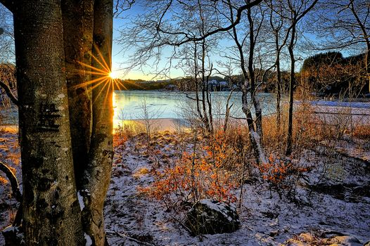 winter, morning, Norway, River, trees, landscape