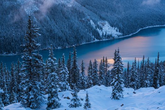 Peyto Lake, Banff National Park, winter, the mountains, lake, trees, landscape