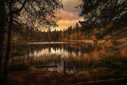 sunset, lake, autumn, trees, landscape