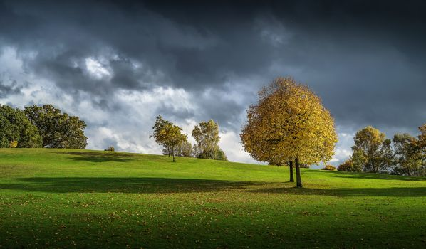 hills, autumn, trees, field, clouds, landscape