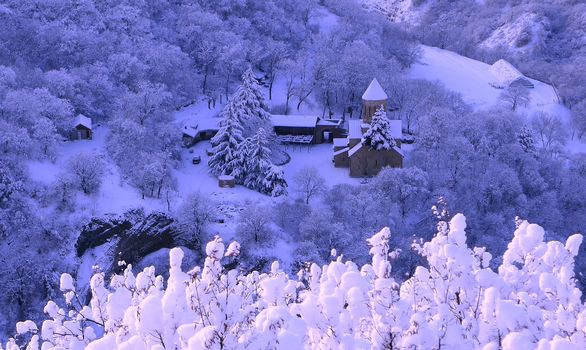 winter, snow, at home, trees, landscape