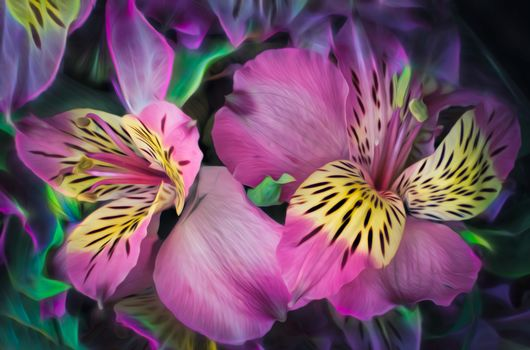 lily, flowers, flora, art