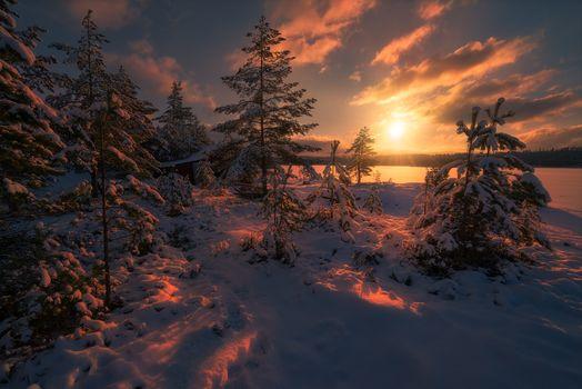 Sunset, Ringerike, Norway, sunset, winter, lake, trees, landscape