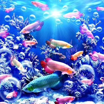 sea, sea bottom, undersea world, fish, art