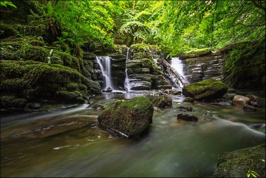 waterfall, water, forest, trees, landscape