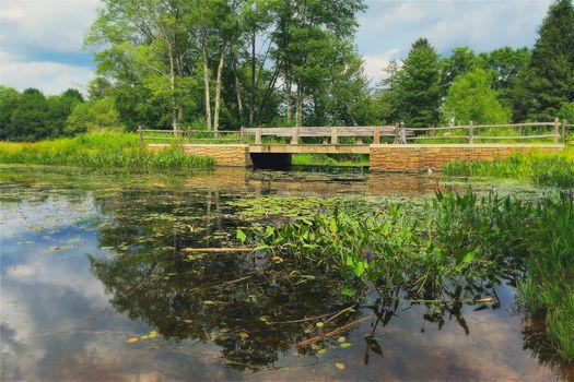 River, bridge, trees, landscape