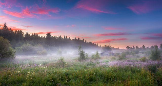 field, fog, lodge, trees, sunset, landscape