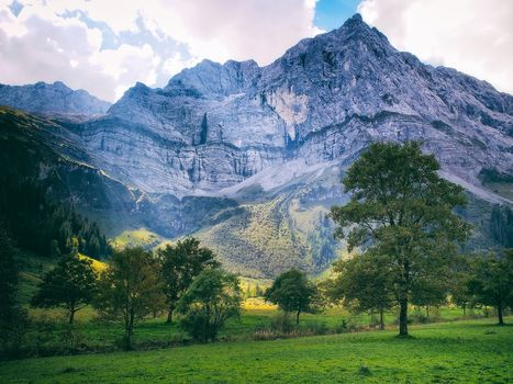 field, hills, trees, the mountains, landscape, Tyrol, Austria
