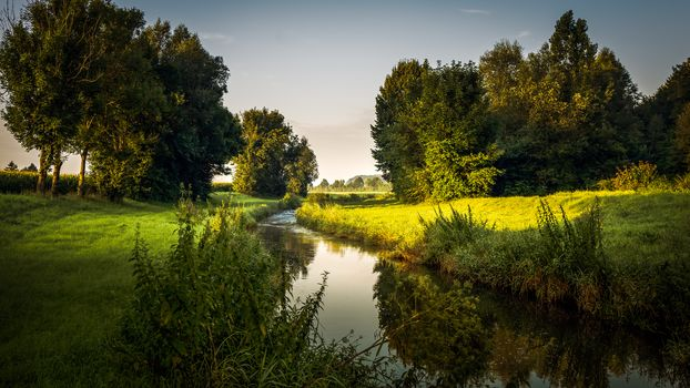 small river, River, trees, nature