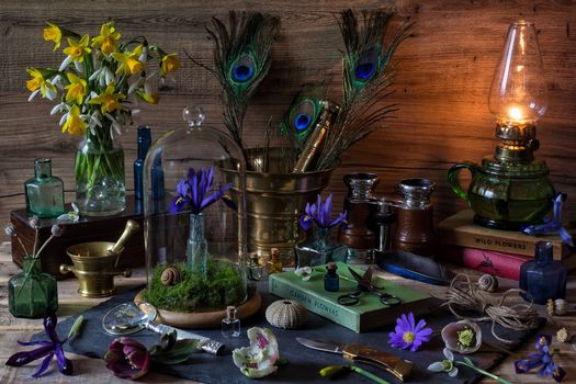 lamp, lamp, kerosene, paraffin, oil lamp, table, jug, Daffodils, Podsnezhniki, iris, still life