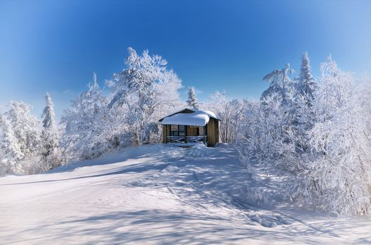 winter, Hill, snow, trees, lodge, landscape