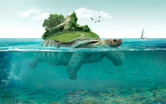 sea, turtle, Island, art
