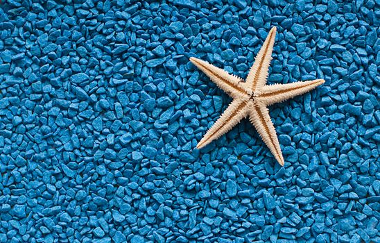 галька, гравий, камни, морская звезда