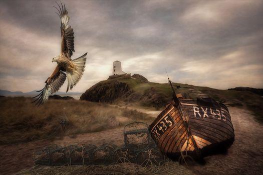 море, берег, маяк, лодка, орел, пейзаж
