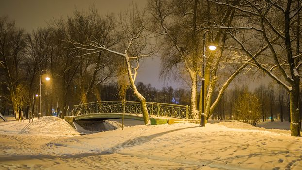 Bridge in the Moscow Victory Park