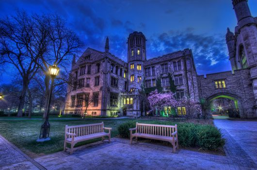 university, Chicago, College, Campus, night