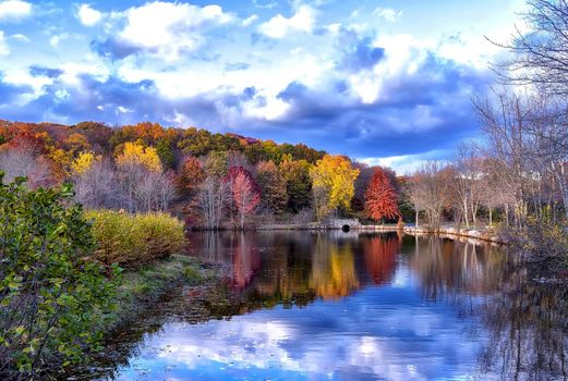 Park Brooks in Trumbull, Connecticut, USA, autumn, landscape