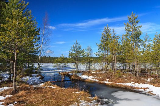 Russia, Karelia, winter, lake, trees, landscape