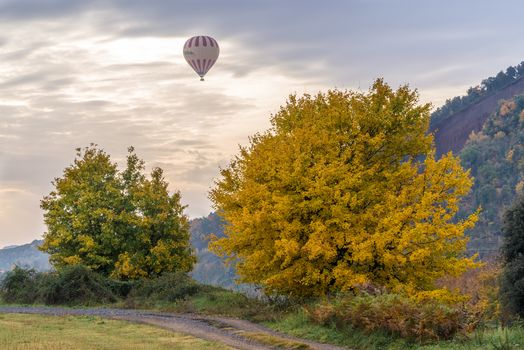 autumn, sunset, field, trees, road, Balloon, landscape