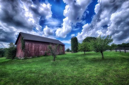 field, house, garden, road, trees, sky, clouds, landscape