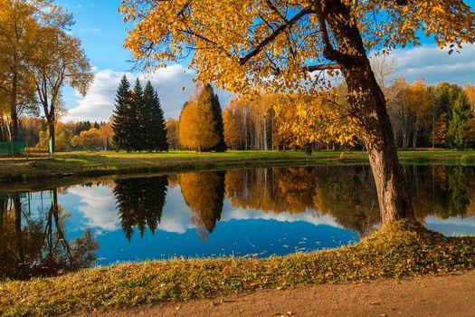 Pavlovsk, Pavlovsk park, water, autumn, trees, landscape, Russia