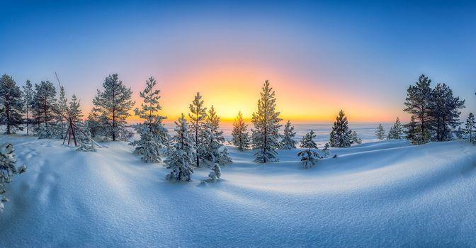 winter, sunset, snow, snowdrifts, trees, landscape
