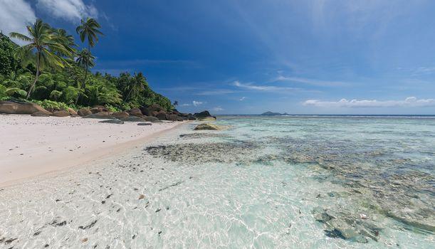 Seychelles, sea, Coast, Island, stones, palm trees, beach, landscape