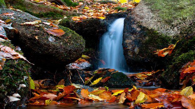 Осенняя вода (16:9, 30 шт)