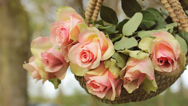 Нежный розовый букет (16:9)