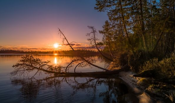 Finland, sunset, lake, Coast, forest, trees, landscape