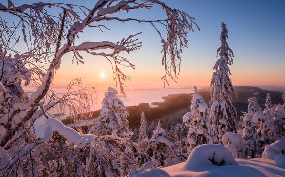 Finland, winter, snow, snowdrifts, trees, the mountains, sunset, landscape