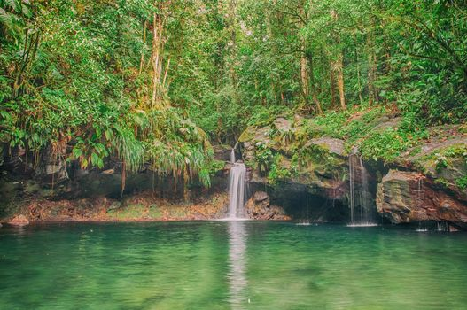 waterfall, water, forest, jungle, trees, landscape