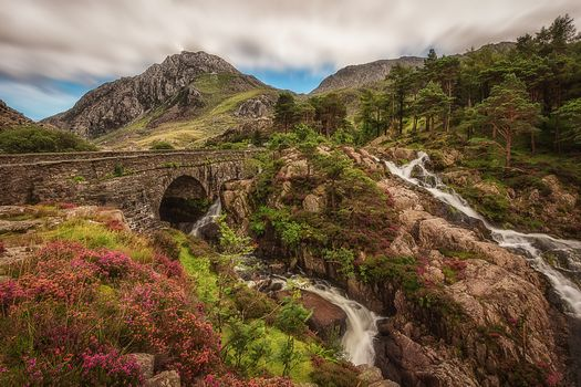 Snowdonia, the mountains, bridge, rock, stones, flowers, small river, waterfall, trees, landscape