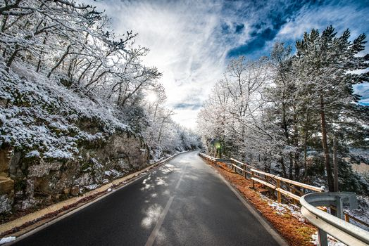 winter, snow, road, trees, landscape