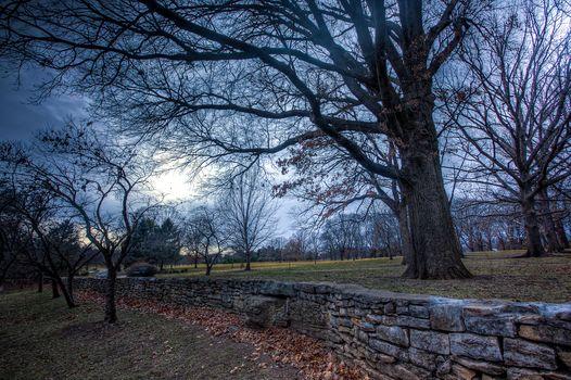 park, trees, autumn, fence, stones, field, landscape