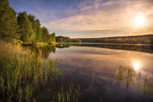 sunset, lake, trees, landscape