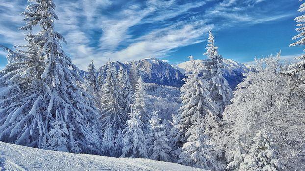 зима, горы, деревья, пейзаж