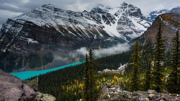 Лес и горы (16:9)