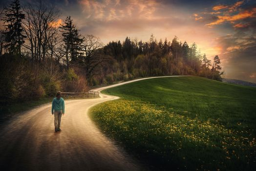 sunset, road, forest, trees, field holmols, girl, landscape