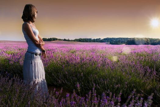 field, lavender, girl, flowers, landscape